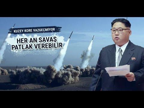 Kuzay Kore Hakkında 9 İLGİNÇ BİLGİ ...