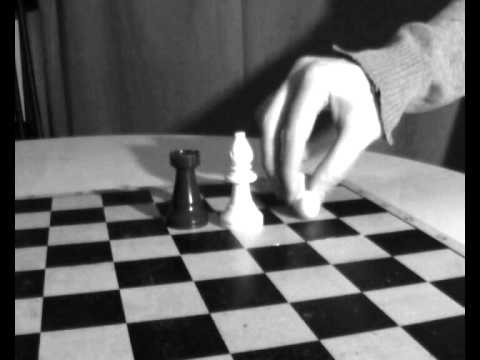 The Chess Life