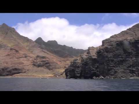 isla (island- archipel) juan fernandez - flora-flore- partie 01