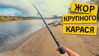 ЖОР КРУПНОГО КАРАСЯ ОСЕНЬЮ Рыбалка на донки Ловлю карасей и потом их готовлю
