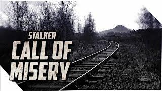 CALL OF MISERY БЕТА STALKER Обзор. Установка