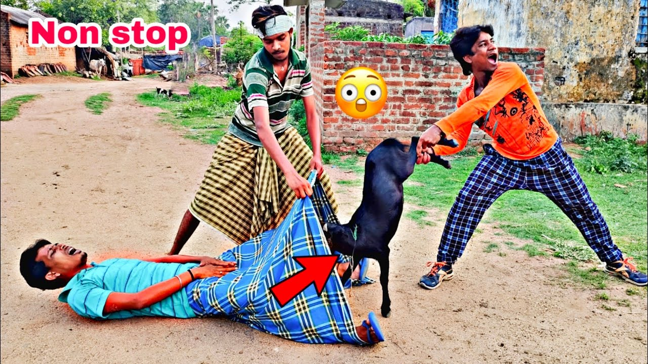 Download Non stop TRY TO NOT LAUGH CHALLENGE Must watch new funny video 2021_by fun sins। comedy video।ep80