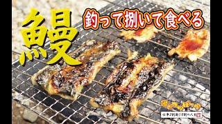 【男の料理】田舎では出来ますよ!ウナギを釣って捌いて食べる!