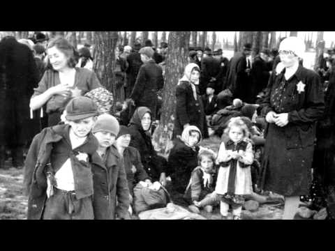 Surviving the Holocaust: Segment 6 — The Gas Chambers