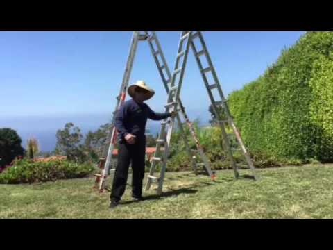 John Teng Reviews Two Different Quotlittle Giantquot Ladders