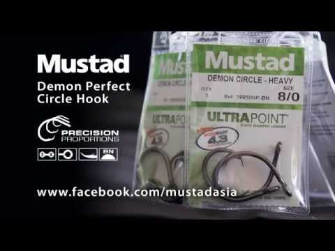 Better Hook-ups with Mustad Demon Perfect Circle Hooks