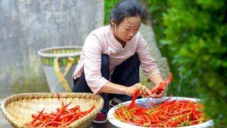 Chinese cuisine | How to make chili sauce | wild girl