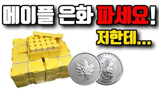 $275 메이플 은화, 실버바 파세요 / 금값, 은값 …