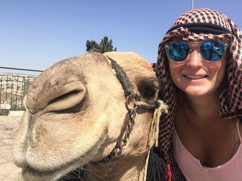 Mount of Olives, Biblical Zoo & Rock Climbing | Israel Study Abroad Vlog
