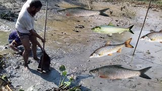 Wow! Amazing People Catching Fish By Hands best Fishing Videos Amazing Fishing Videos hunter Fishing