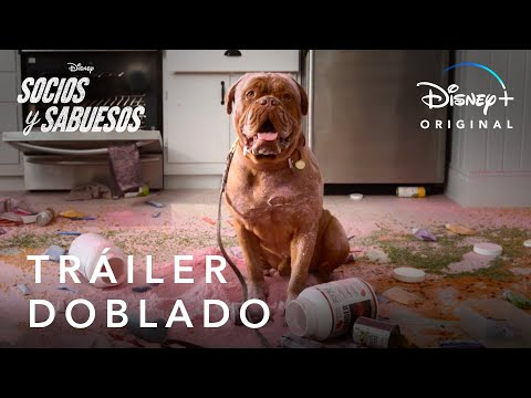Socios y Sabuesos   Tráiler Oficial doblado   Disney+