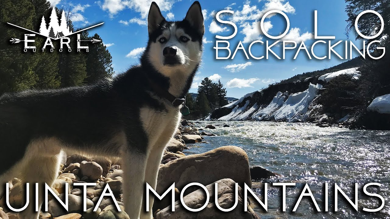 Solo Camping with a Husky - Uinta Mountains - YouTube