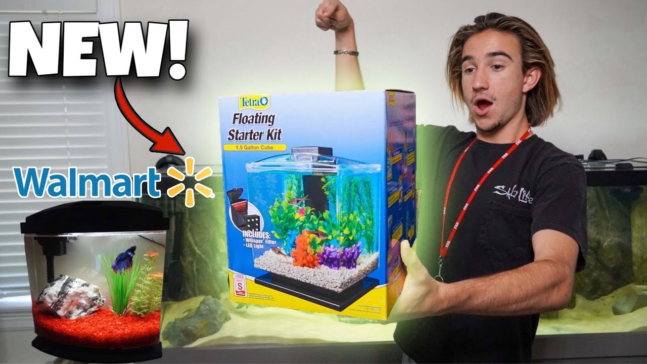 *New* WALMART Fish Tank for COLORFUL Aquarium Fish!