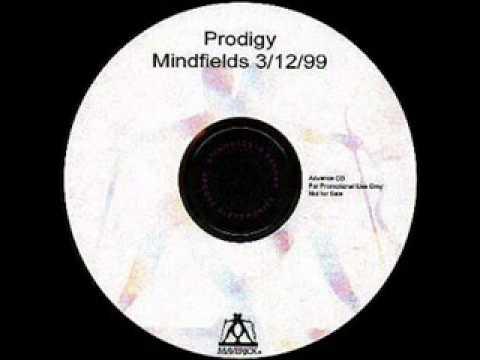 Prodigy-Mindfields(Rop's Rmx)