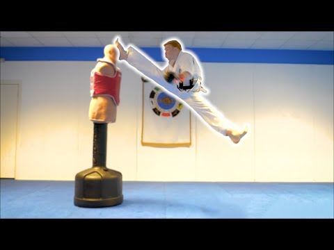 Taekwondo Training on the BOB XL   Martial Arts Kicking Sampler   Ginger Ninja Trickster
