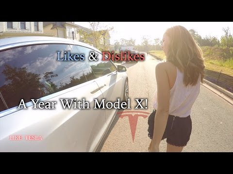 Model X Subpar or Sublime? 12 Months Later!