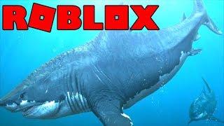 BEWARE DES MEGALODON AT ROBLOX 🦈 (Sharkbite)