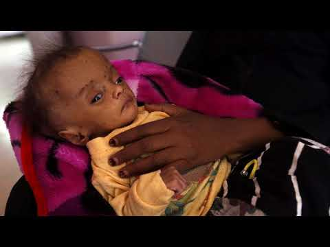 News Update Yemen war: First food aid arrives at port after blockade eased 26/11/17
