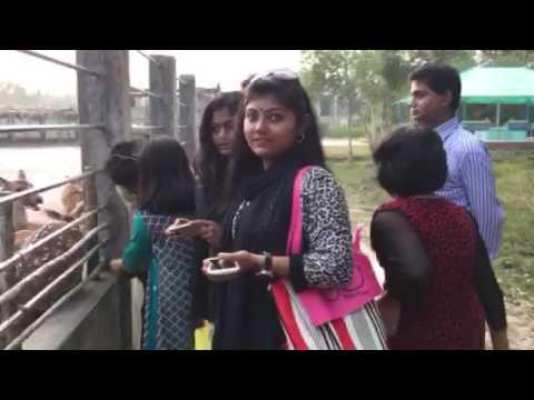 Sundarban trip in Khulna