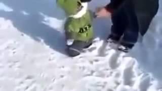 عندما يرى القرد الثلج لأول مرة   Quand le singe voit la neige pr la 1 ère fois