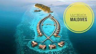 Lily Beach Maldives - обзор и особенности отеля - (Лили Бич, Мальдивы)