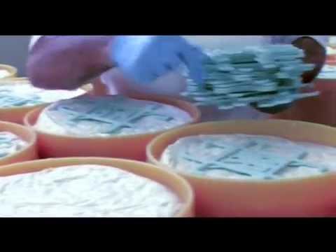Gorgonzola Cheese: Official presentation