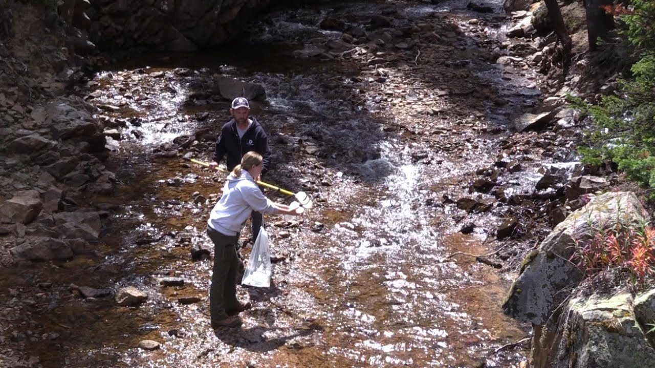 Water quality sampling in Grand County