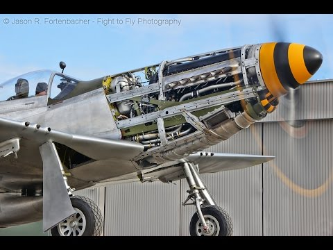 North American P-51 Mustang - Compilation