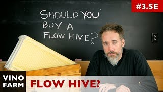 FLOW HIVE - Why I haven