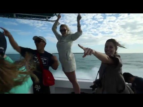 NYFA Documentary Expedition to Belize