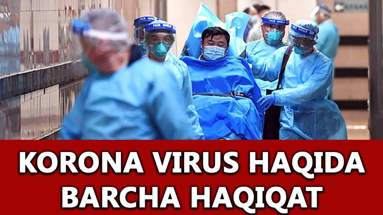 koronavirus haqida