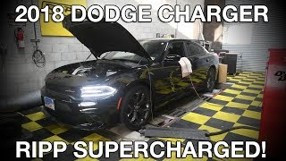 We put a 2018 RIPP Supercharged Charger to the Test!