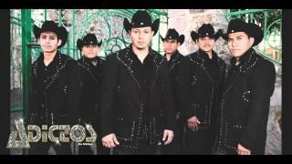 Adictos de Hidalgo-Gallos de Hidalgo