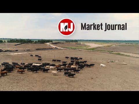 Market Journal - June 9, 2017 (full episode)