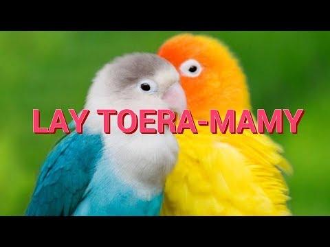 NJAKATIANA - TOERA-MAMY - [ LYRICS ]