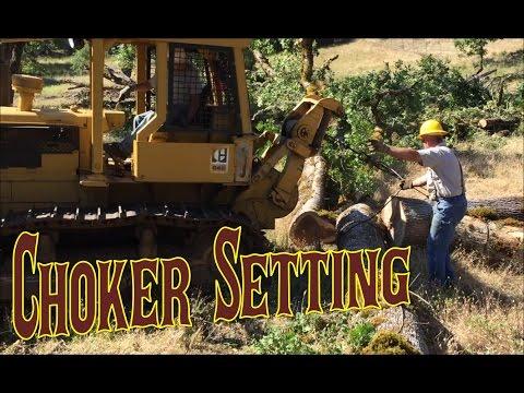 Logging with D6C