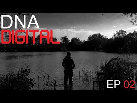 DNA Digital - Episode 2
