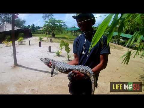 Suriname in 6 minuten! - Life In #Su