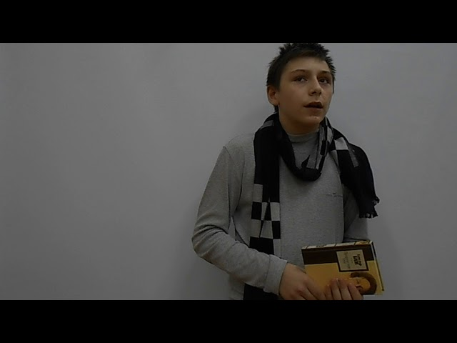 Изображение предпросмотра прочтения – ЛюдмилаВолкова читает произведение «Возмездие» А.А.Блока