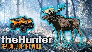 СИБИРСКАЯ ЯЗВА И ЖАРКАЯ ОХОТА - The Hunter: Call of the Wild #6