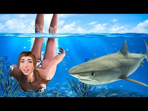 SWIMMING WITH SHARKS!!
