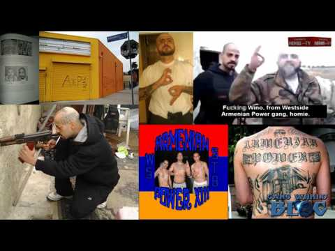 Armenian Power 13 Gang History (Hollywood)