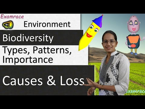 Biodiversity: Types, Patterns, Importance, Causes and Loss