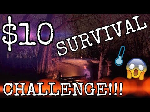 $10 Dollar Store Survival Challenge! 24 HOURS!