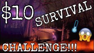 $10 Dollar Store Survival Challenge! 24 HOURS!