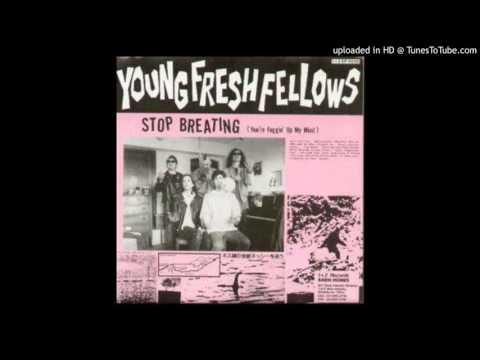 Young Fresh Fellows  - Disco Sucks