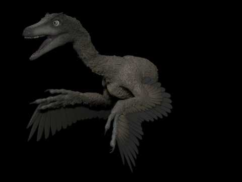 Troodon Turntable Feathered