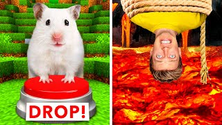Hamster Maze vs Human Traps  World's Most Extreme Elimination Game! Last To Survive Minecraft Wins
