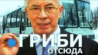 Грибы - Тает Лёд / ПАРОДИЯ by АЗАРОВ!