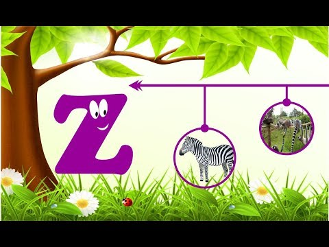 Learn Alphabet Z | Toddler Words | Words That Start With Z | Learning Alphabets For Kids